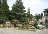 21世紀の墓地のあり方を模索する
