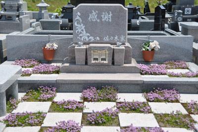 ガーデニング墓石花盛り
